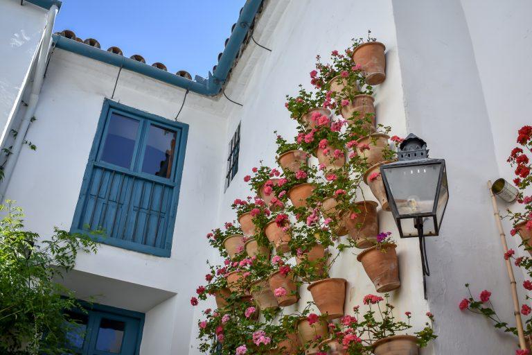 25 cosas que ver y hacer en Córdoba