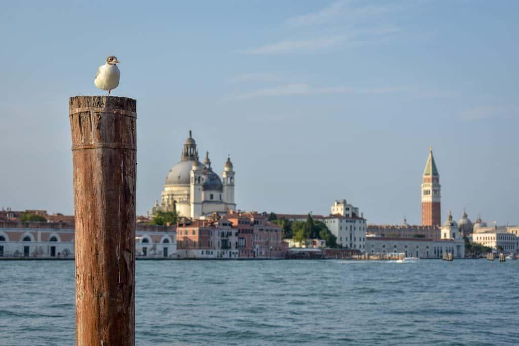 Transporte al aeropuerto de Venecia